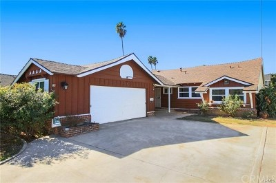 Van Nuys Single Family Home For Sale: 6909 Langdon Avenue