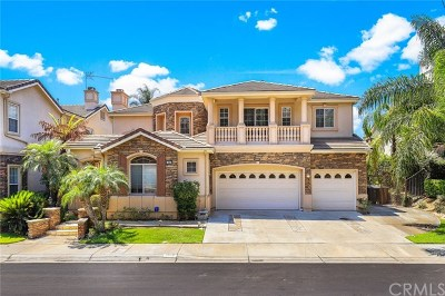 Yorba Linda Single Family Home For Sale: 3810 Oak Hill Drive