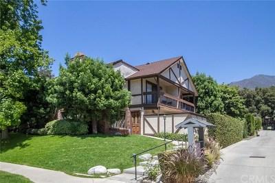 Sierra Madre Condo/Townhouse For Sale: 395 Mariposa Avenue #F
