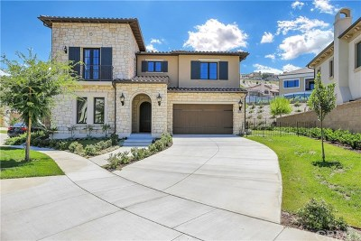 Irvine Single Family Home For Sale: 114 Iron Gate
