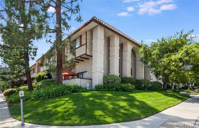 Pasadena Condo/Townhouse For Sale: 2450 E Del Mar Boulevard #4