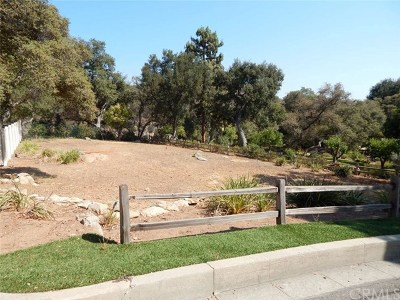 Monrovia Single Family Home For Sale: Ridgeside