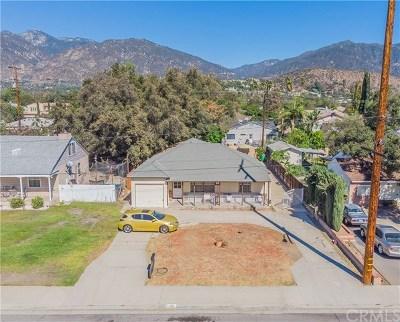 Arcadia Single Family Home For Sale: 251 E Colorado Boulevard