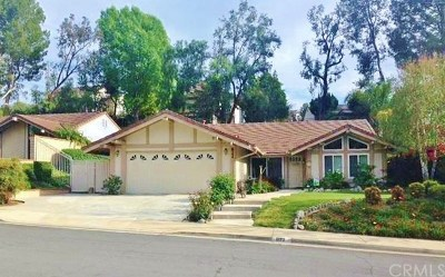 San Dimas Single Family Home For Sale: 822 Calle Arroyo