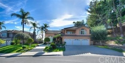 San Dimas Single Family Home For Sale: 238 Calle Concordia