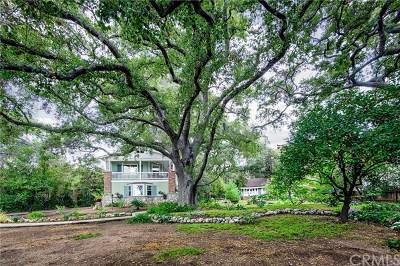Sierra Madre Single Family Home For Sale: 491 W Montecito Avenue