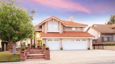 Walnut Single Family Home For Sale: 317 Amber Ridge Lane