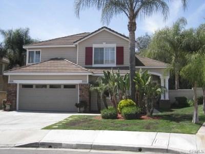 Chino Hills Single Family Home For Sale: 1633 Vista Del Norte