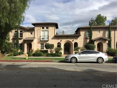 Pasadena Multi Family Home For Sale: 650 S Lake Ave