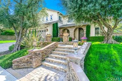 Chino Hills Single Family Home For Sale: 16724 Carob Avenue