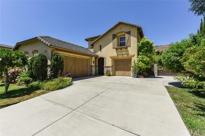 Chino Hills Single Family Home For Sale: 15341 Canon Lane
