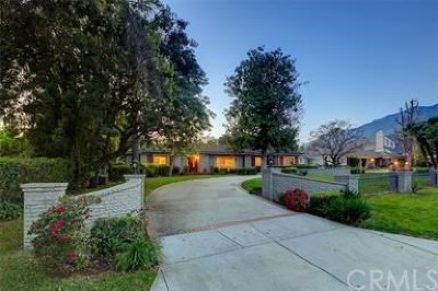 Arcadia Single Family Home For Sale: 1415 Rancho Road