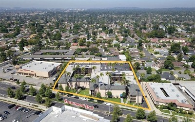 San Gabriel Multi Family Home For Sale: 6343 Rosemead Boulevard