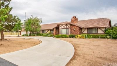 Hesperia Single Family Home For Sale: 10952 5th Avenue