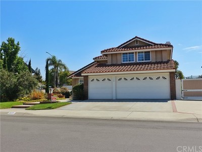 Yorba Linda Single Family Home For Sale: 5170 Via Primaria