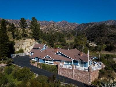 Burbank Single Family Home For Sale: 1151 E Walnut Avenue