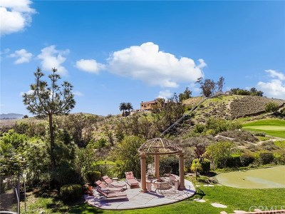 Moorpark Single Family Home For Sale: 12478 Nelson Road