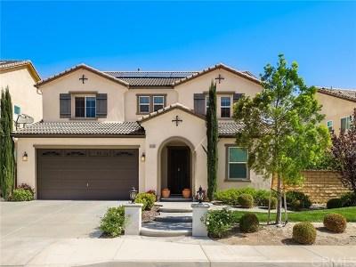 Saugus Single Family Home For Sale: 20533 Brookie Lane