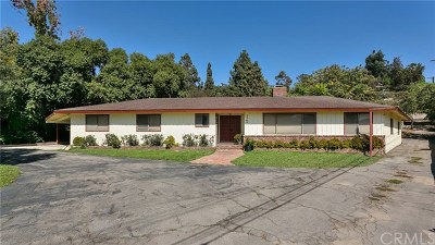 Shadow Hills Single Family Home For Sale: 9948 Terhune Avenue
