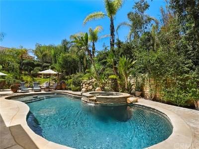 Thousand Oaks Single Family Home For Sale: 2933 Heavenly Ridge Street