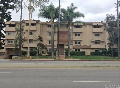 Van Nuys Condo/Townhouse For Sale: 15114 Sherman Way #206