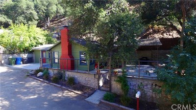 Tujunga Single Family Home For Sale: 6260 Blanchard Canyon Road