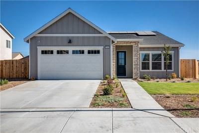 Bakersfield Single Family Home For Sale: 5904 Glen Rose Avenue