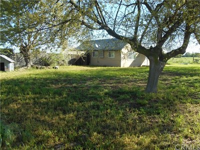 Orland Single Family Home For Sale: 5878 County Road 200