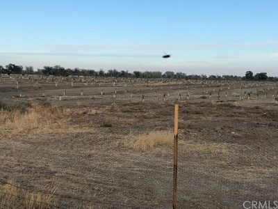 Orland Residential Lots & Land For Sale: County Road Ff