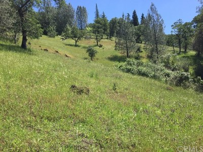 Chico Residential Lots & Land For Sale: Honey Run Road