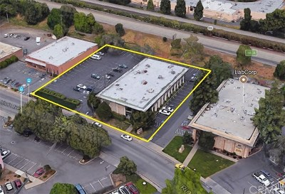 Butte County Commercial Lease For Lease: 564 Rio Lindo Avenue #100