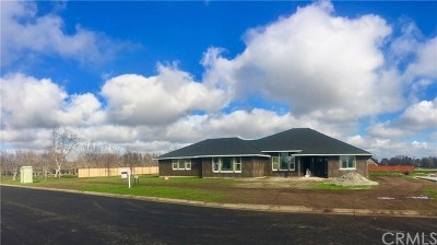 Chico Single Family Home For Sale: 2898 Guynn