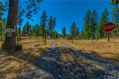 Oroville Single Family Home For Sale: 6077 Big Bend Road