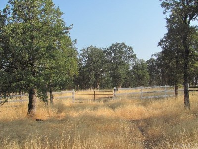 Red Bluff Residential Lots & Land For Sale: 56 Lot 56 Ranchero Dr.