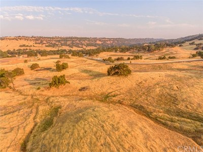 Butte Valley Residential Lots & Land For Sale: Messilla Valley