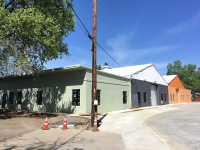 Butte County Commercial Lease For Lease: 1095 Nelson Street #100