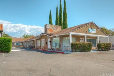 Chico Multi Family Home For Sale: 2568 Esplanade