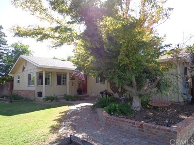 Willows CA Single Family Home For Sale: $363,000