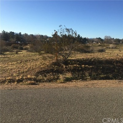 Victorville Residential Lots & Land For Sale: Sholic