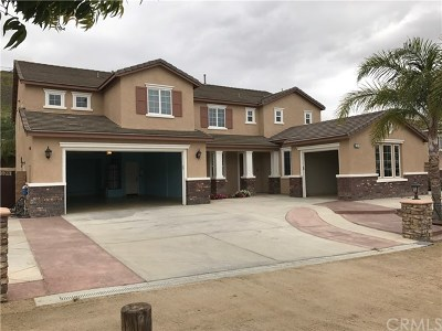 Norco Single Family Home For Sale: 3550 Crestview Drive