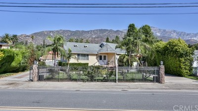 Upland Single Family Home For Sale: 255 W 24th Street