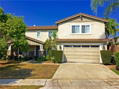 Upland Single Family Home For Sale: 1687 Partridge Avenue