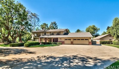 Upland Single Family Home For Sale: 2511 Spring Terrace