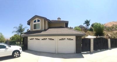 Colton Single Family Home For Sale: 2130 John Matich Drive