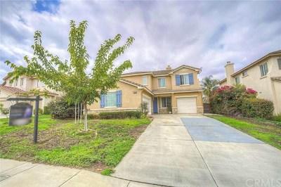 Riverside Single Family Home For Sale: 8569 Lodgepole Lane