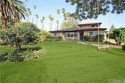 Redlands Single Family Home For Sale: 459 Summit Avenue