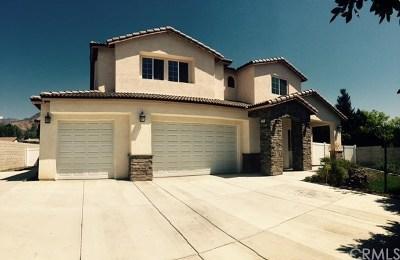 Upland Single Family Home For Sale: 2218 San Antonio Avenue N