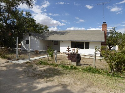 Lucerne Valley Single Family Home For Sale: 35722 Rabbit Springs Road