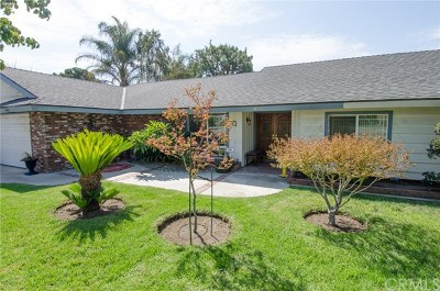 Chino Single Family Home For Sale: 6115 Chino Avenue