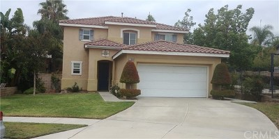 Rancho Cucamonga Single Family Home For Sale: 11780 Black Horse Court